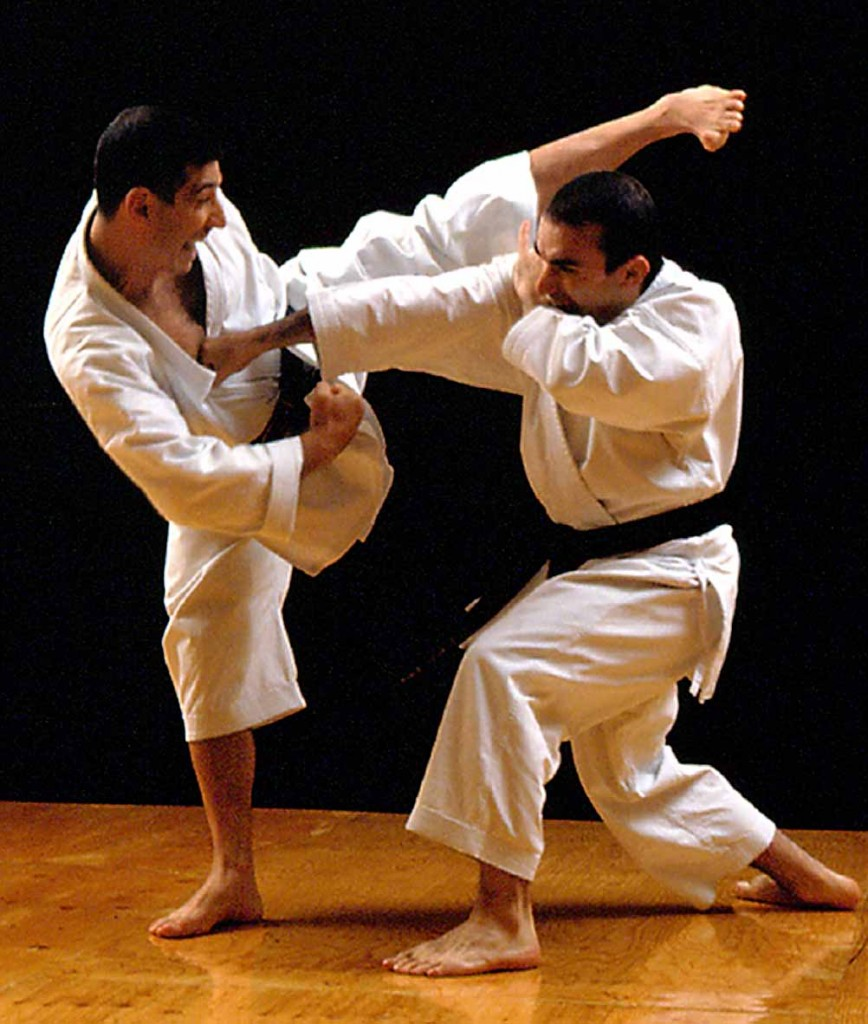 Karate Nikamon Milano