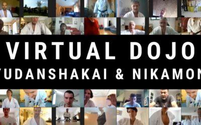 Virtual Dojo Karate Do Training
