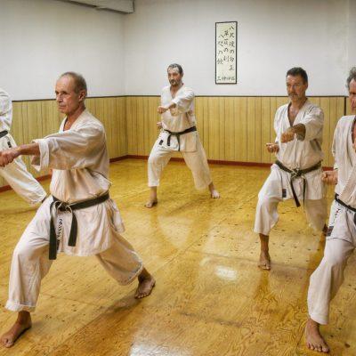 Karate Adulti