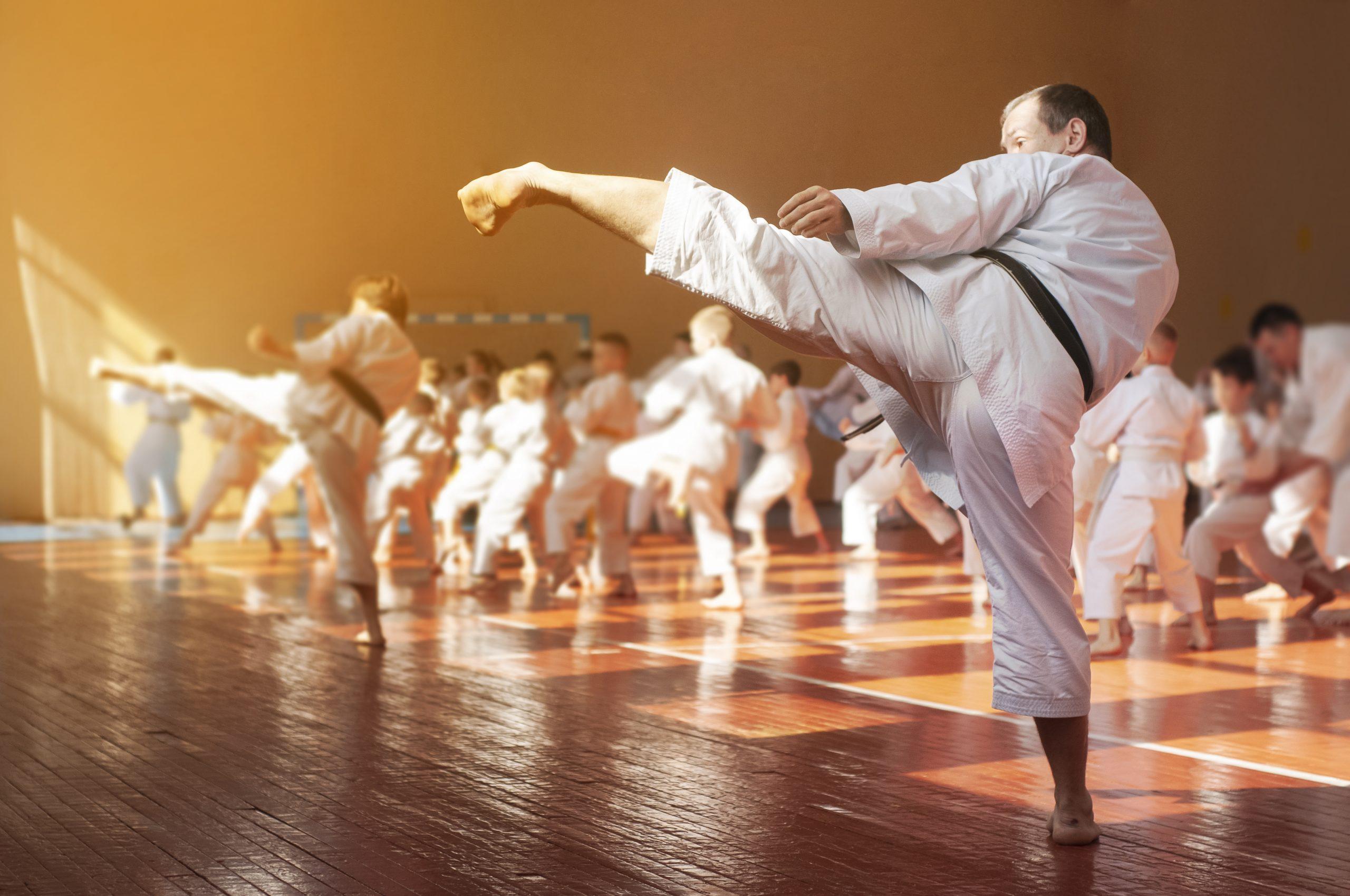 Karate adult