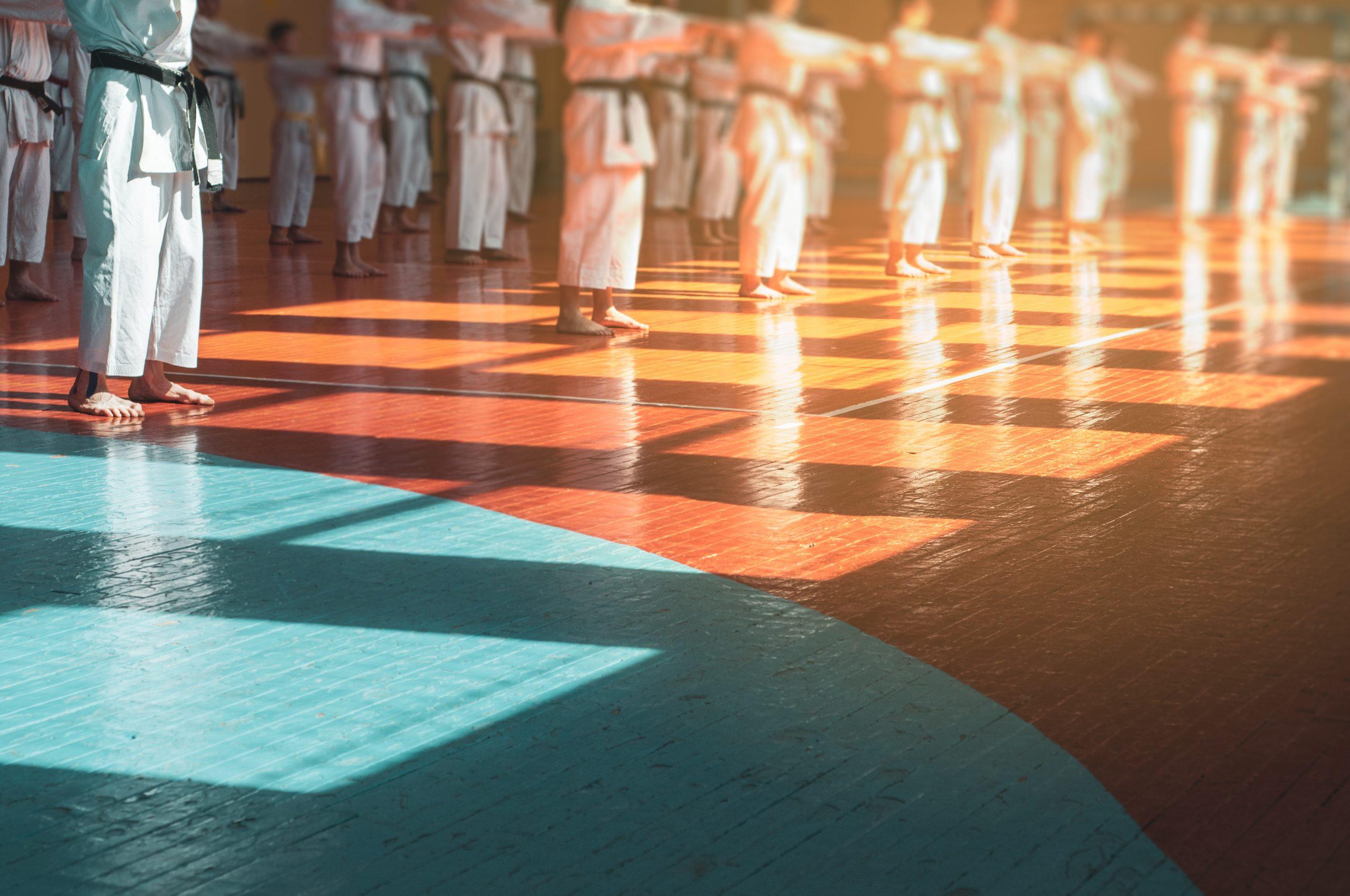 Karate Stage